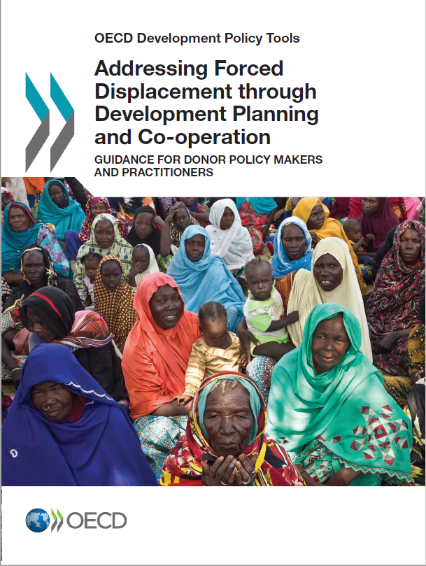 "<h4>Relatório OCDE: ""Adressing Forced Displacement through Development Planning and Co-operation""</h4>"
