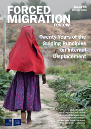 "Revista Forced Migration: ""Twenty Years of the Guiding Principles on Internal Displacement"""
