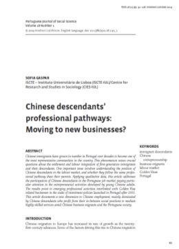 Chinese descendants professional pathways: Moving to new businesses?